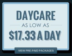 dog daycare rates